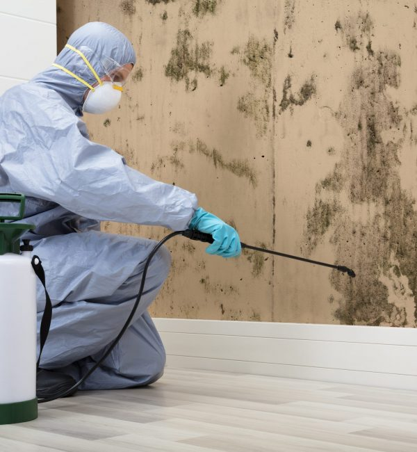 Pest,Control,Worker,In,Uniform,Spraying,Pesticide,On,Damaged,Wall
